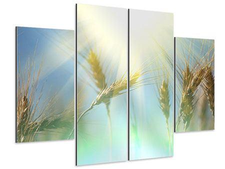 Aluminiumbild 4-teilig König des Getreides