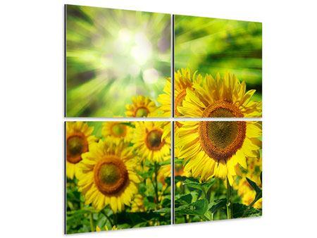 Aluminiumbild 4-teilig Die Sonne und die Blumen