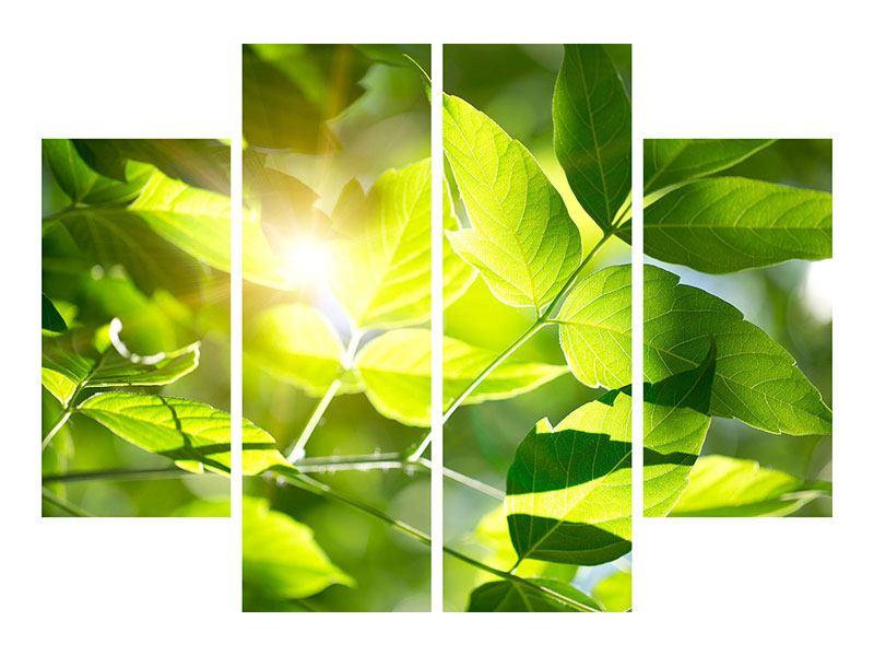 Aluminiumbild 4-teilig Es grünt so grün