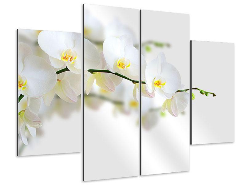 Aluminiumbild 4-teilig Weisse Orchideen