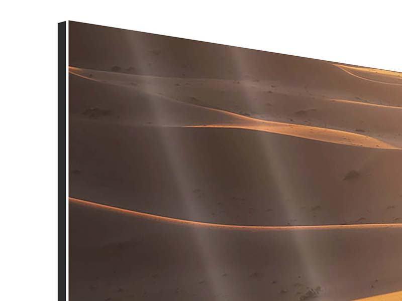 Aluminiumbild 4-teilig Wüstenwanderung