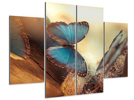 Aluminiumbild 4-teilig Schmetterlinge