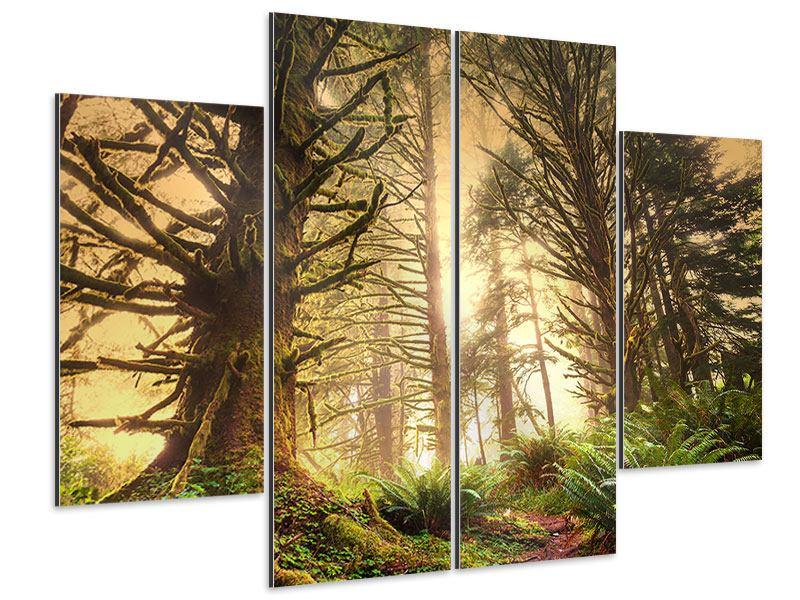Aluminiumbild 4-teilig Sonnenuntergang im Dschungel