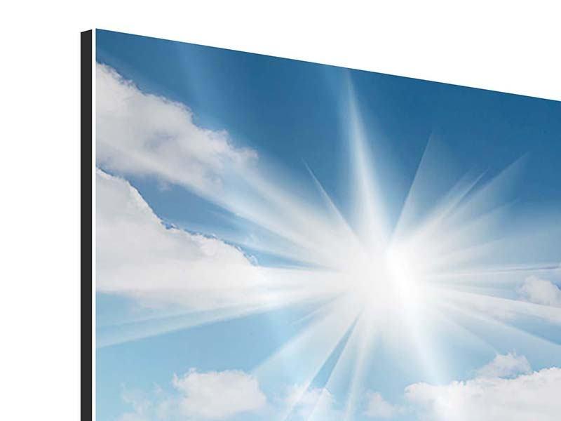 Aluminiumbild 4-teilig Blumenwiese