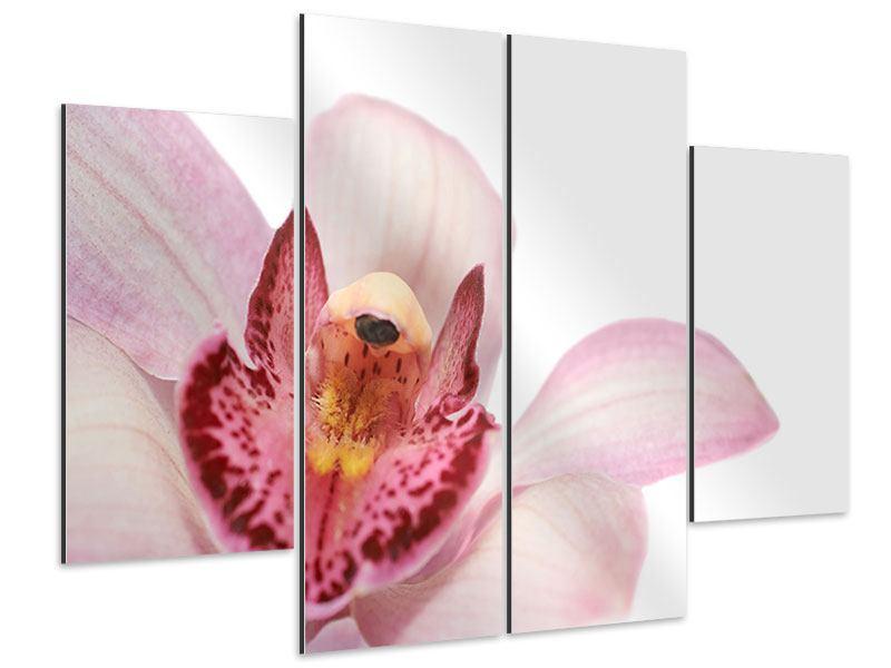 Aluminiumbild 4-teilig Orchideenblüte XXL