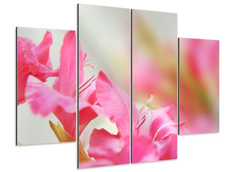 Aluminiumbild 4-teilig Gladiolen