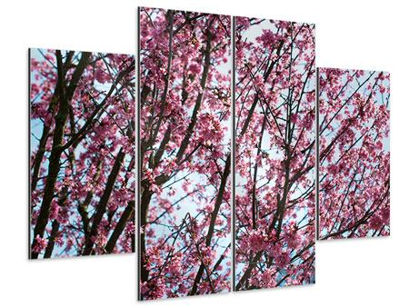 Aluminiumbild 4-teilig Japanische Blütenkirsche