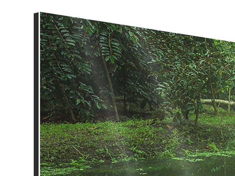 Aluminiumbild 4-teilig Gartenteich