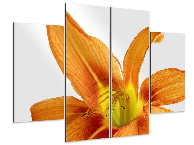 Aluminiumbild 4-teilig Die Tiger-Lilie
