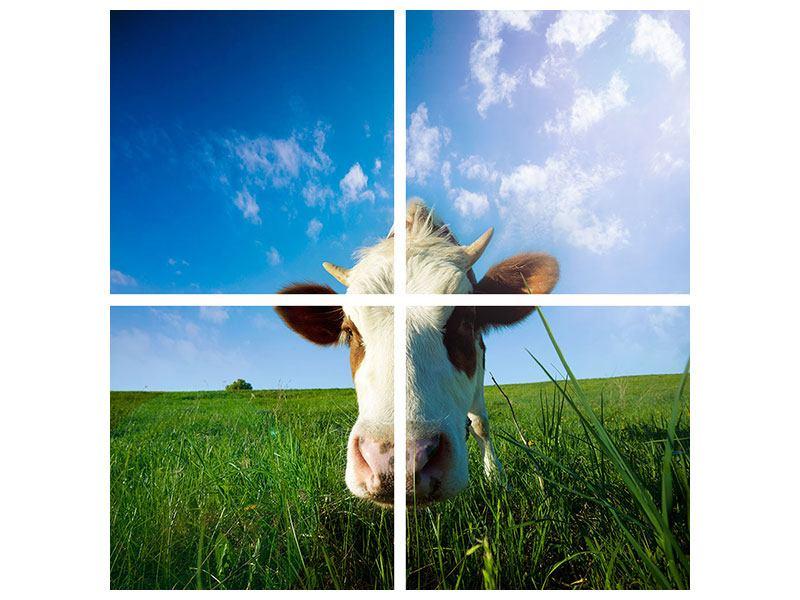 Aluminiumbild 4-teilig Die Kuh