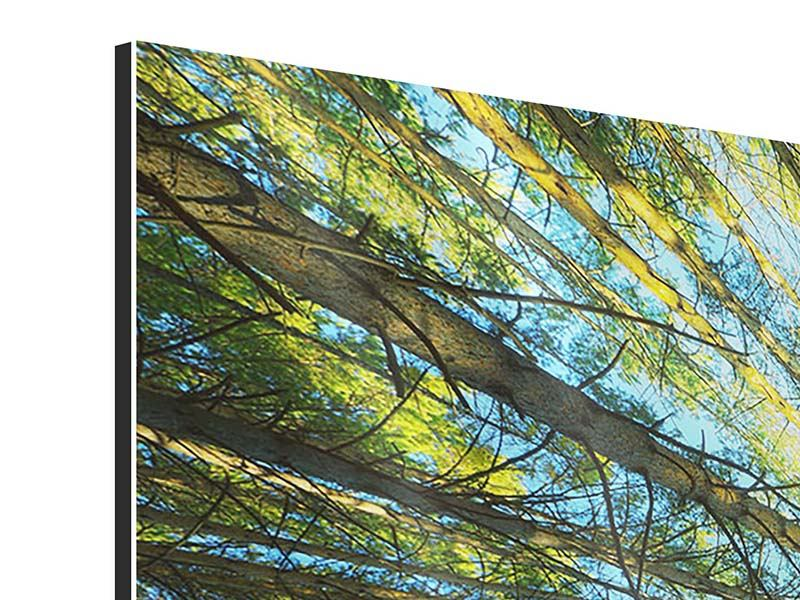 Aluminiumbild 4-teilig Kiefernwald