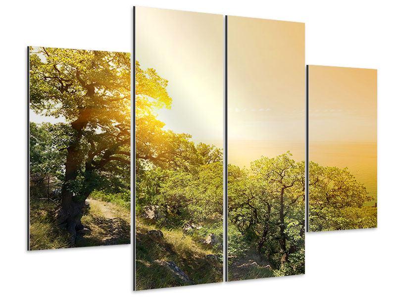 Aluminiumbild 4-teilig Sonnenuntergang in der Natur