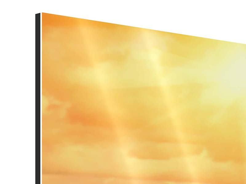 Aluminiumbild 4-teilig Goldenes Licht für Sonnenblumen