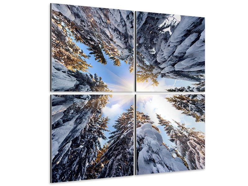 Aluminiumbild 4-teilig Verschneite Tannenspitzen in der Sonne