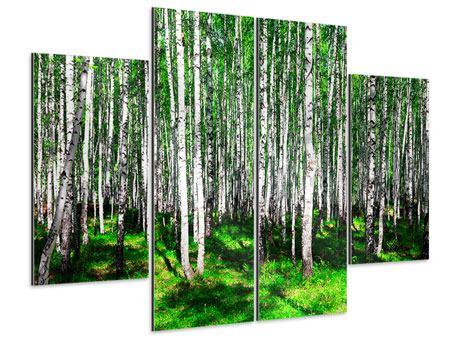 Aluminiumbild 4-teilig Sommerlicher Birkenwald
