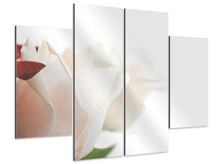 Aluminiumbild 4-teilig Herrliche Rosen