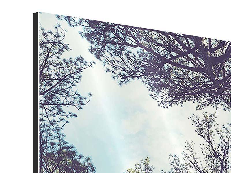 Aluminiumbild 4-teilig High in the Sky