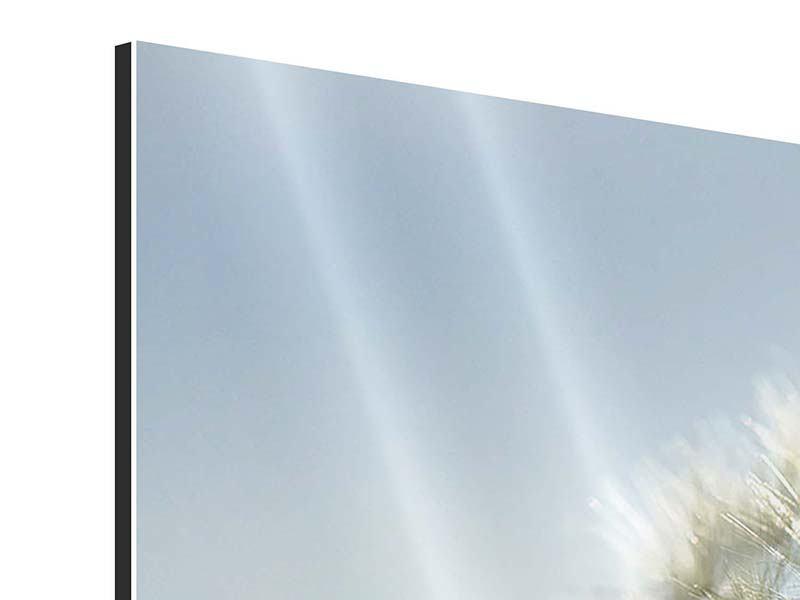 Aluminiumbild 4-teilig Löwenzahn XXL