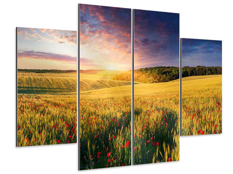 Aluminiumbild 4-teilig Ein Blumenfeld bei Sonnenaufgang