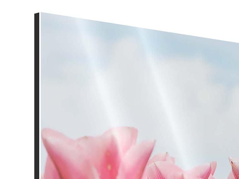 Aluminiumbild 4-teilig Zarte Tulpen