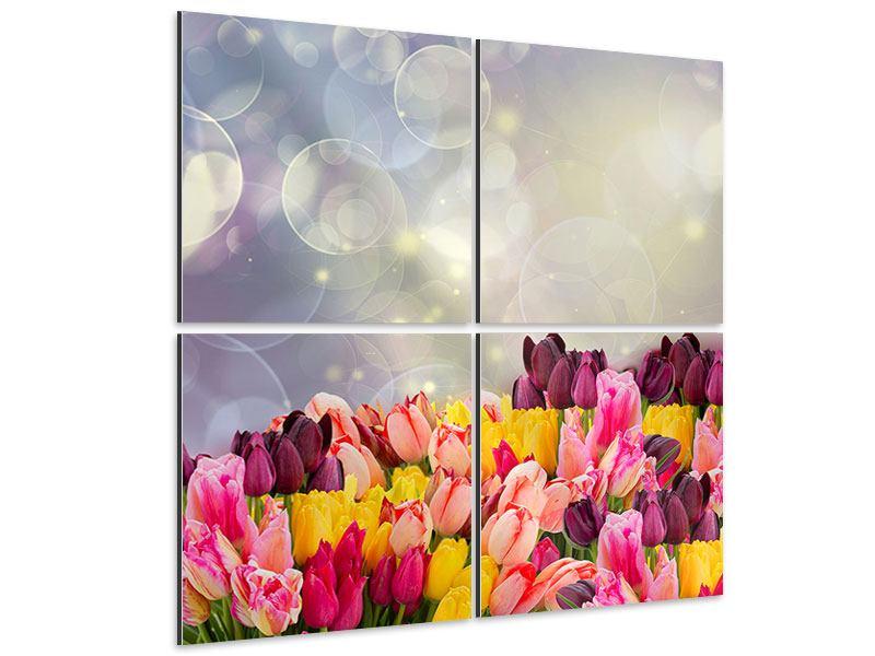 Aluminiumbild 4-teilig Buntes Tulpenbeet im Lichtspiel
