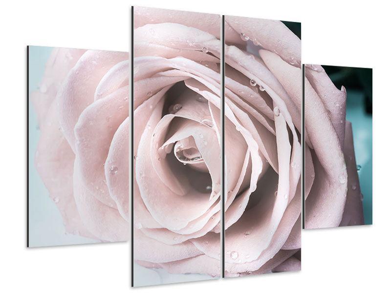 Aluminiumbild 4-teilig Pastellrose