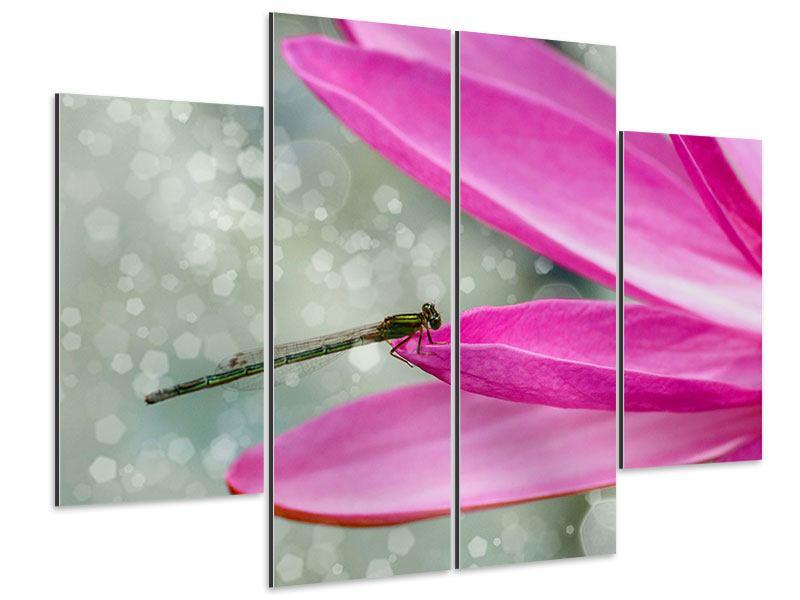 Aluminiumbild 4-teilig Libelle auf dem Seerosenblatt