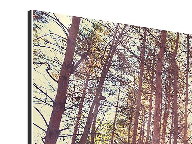 Aluminiumbild 4-teilig Licht am Ende des Waldweges