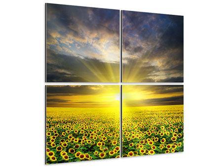 Aluminiumbild 4-teilig Abenddämmerung bei den Sonnenblumen