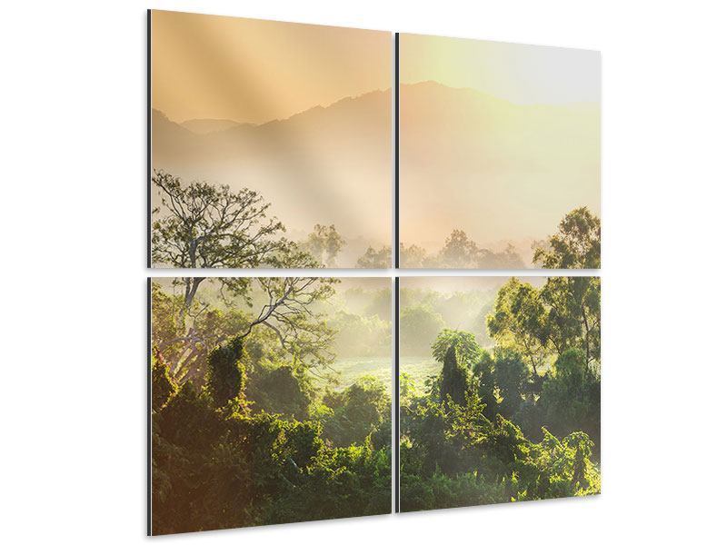Aluminiumbild 4-teilig Lichtspiel im Wald