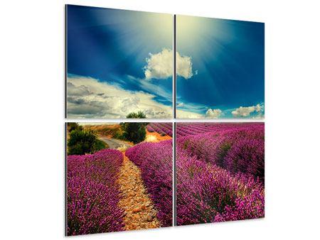 Aluminiumbild 4-teilig Das Lavendeltal