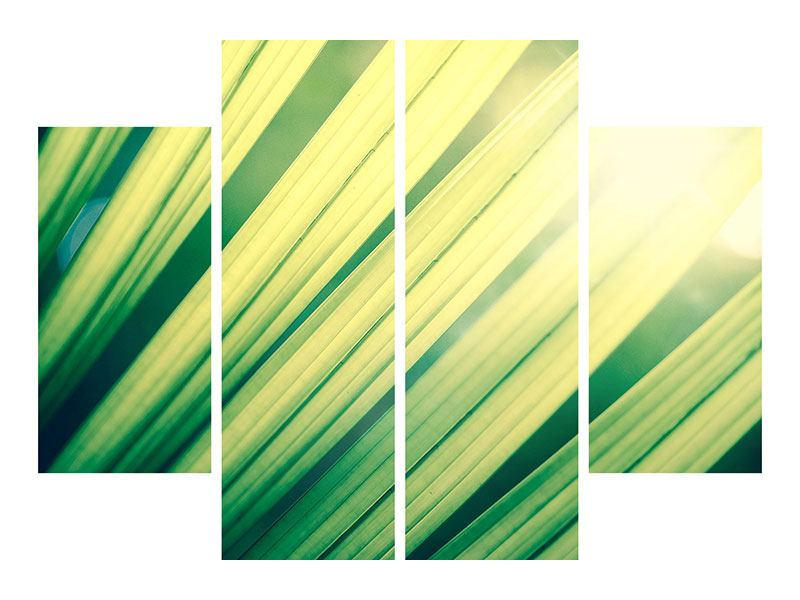 Aluminiumbild 4-teilig Beleuchtetes Palmblatt