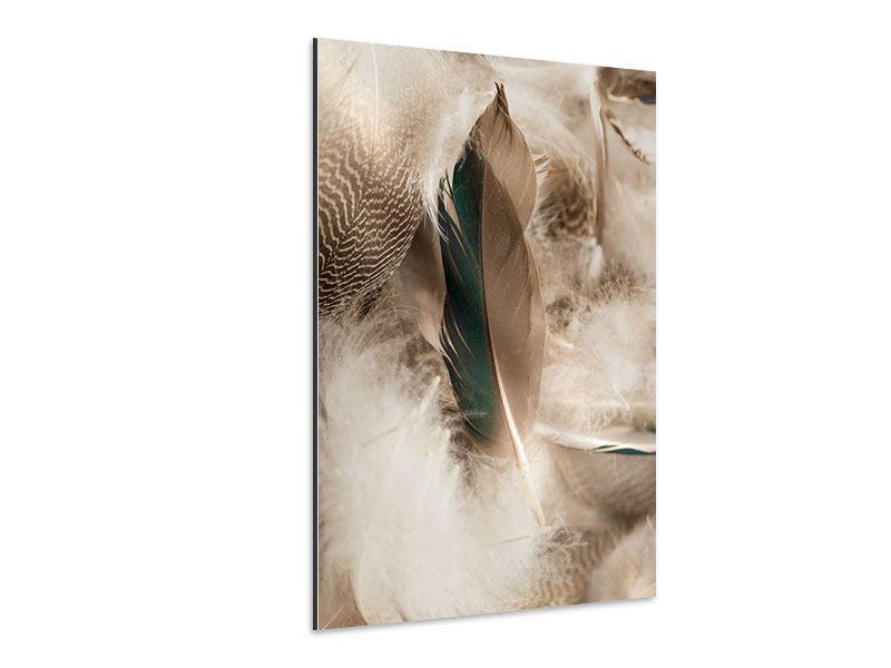 Aluminiumbild Federn