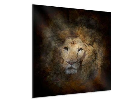 Aluminiumbild Löwenportrait