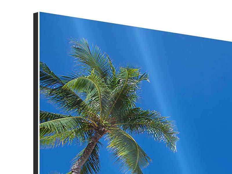 Aluminiumbild Sommer Sonne Strand