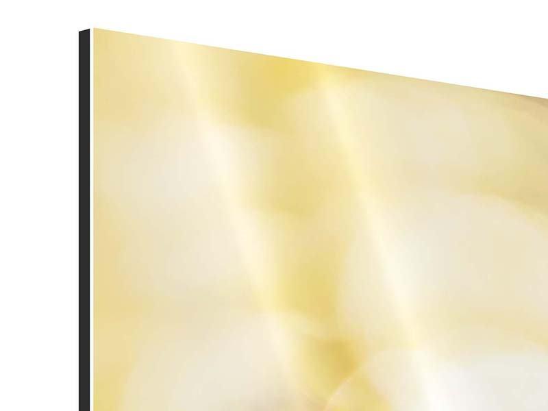 Aluminiumbild Das Licht der Sonnenblumen
