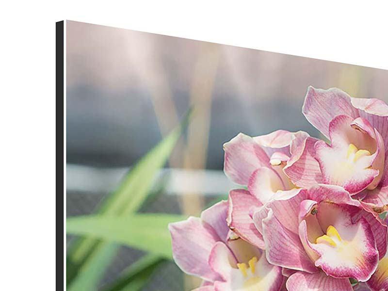 Aluminiumbild Wilde Orchideen