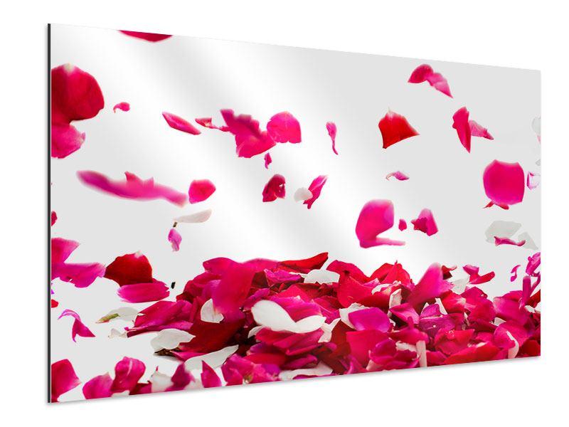 Aluminiumbild Für mich soll`s rote Rosen regnen