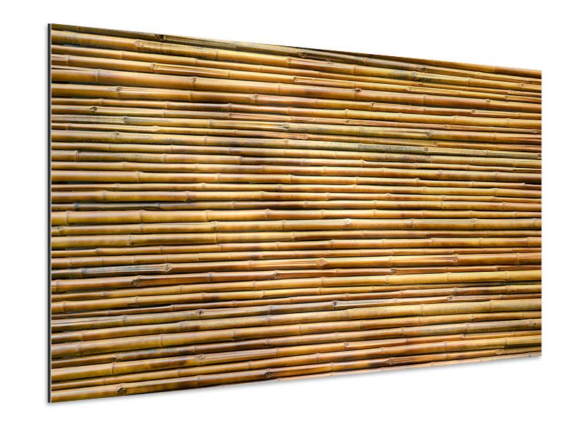 Aluminiumbild Bambus