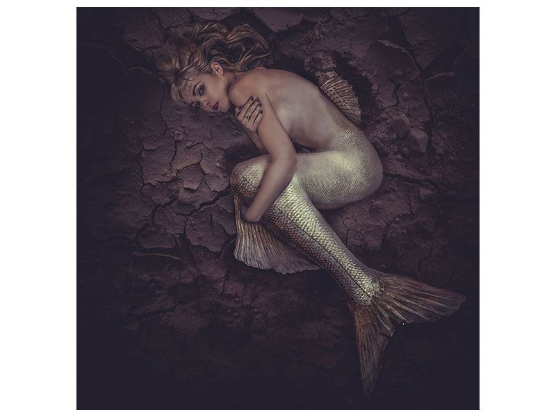 Aluminiumbild Meerjungfrau