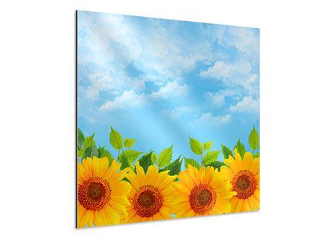 Aluminiumbild Sonnen Flower Power
