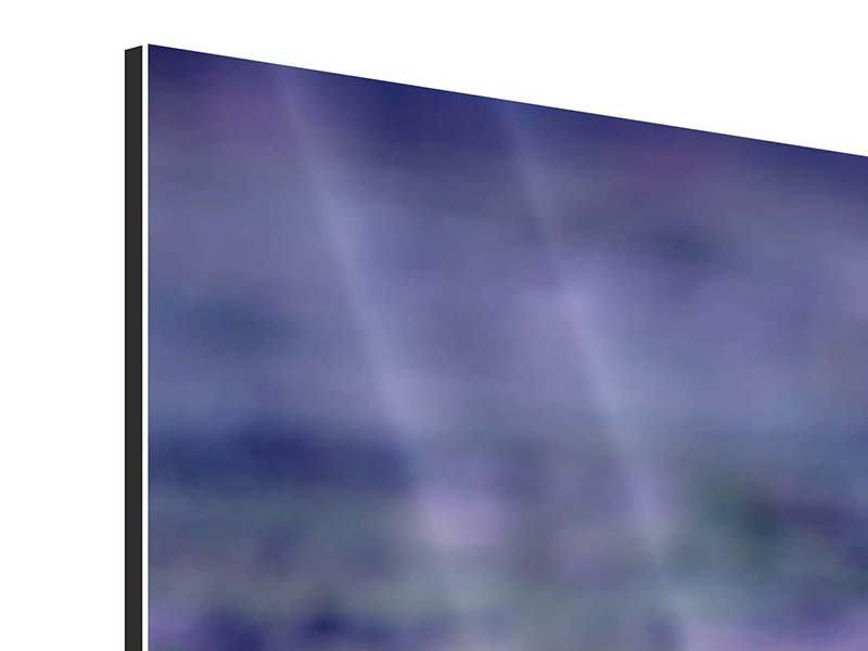 Aluminiumbild Lotus Duo im Sonnenaufgang