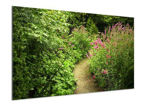 Aluminiumbild Gartenweg