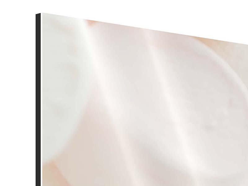 Aluminiumbild Marshmallow