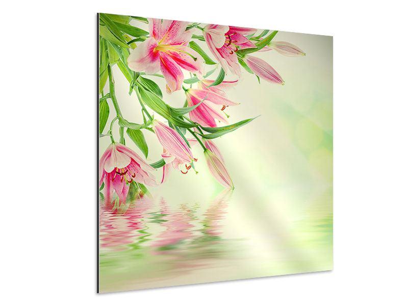 Aluminiumbild Lilien am Wasser