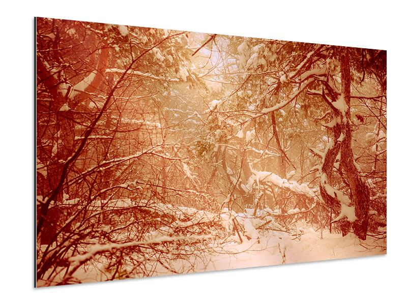 Aluminiumbild Schneewald