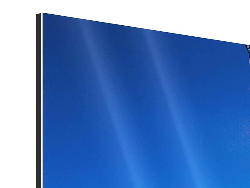 Aluminiumbild Freeriding