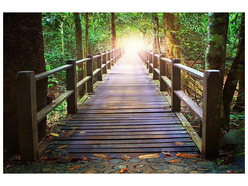 Aluminiumbild Die Brücke im Wald