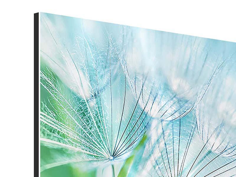 Aluminiumbild Makroaufnahme Pusteblume