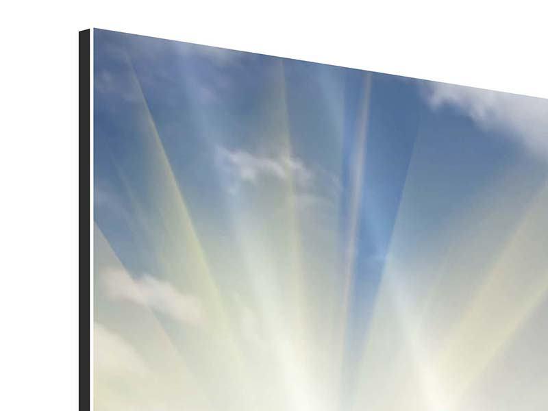 Aluminiumbild Sonnenblumen im Sonnenlicht